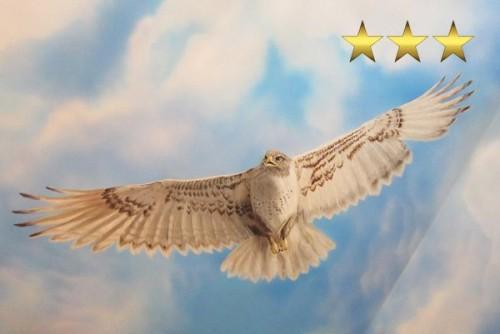 Ропись потолка «Орел в небе»