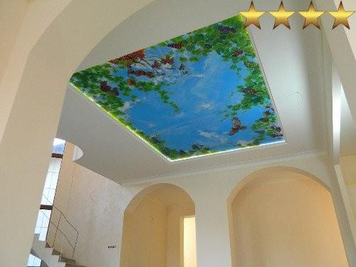 Роспись потолка в Москве виноградная лоза