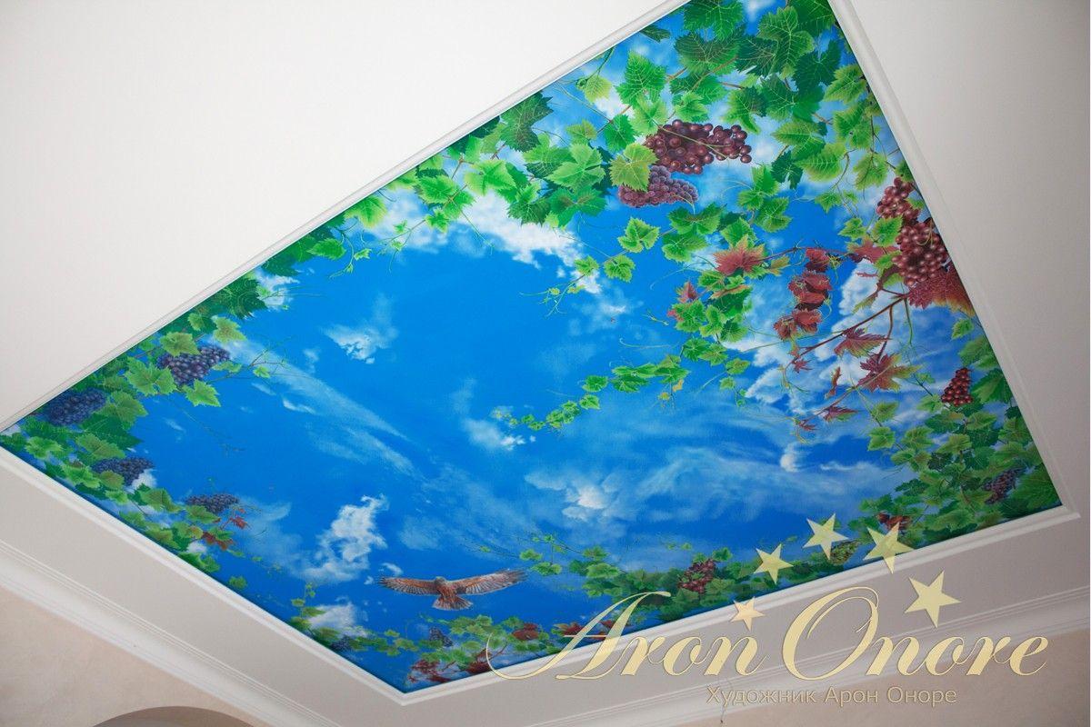 Солнечное небо рисунок на потолке с лозой винограда